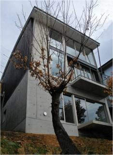 高低差12mの傾斜地に建つ家/御幸山N邸