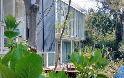 雑木ガーデンの家2020-1