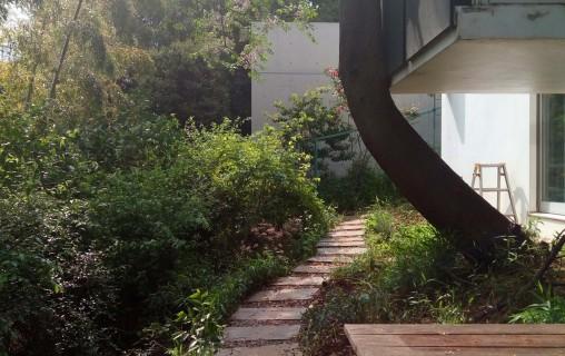 雑木ガーデン02-1