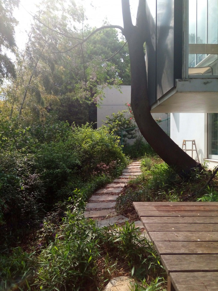 雑木ガーデンの家_02