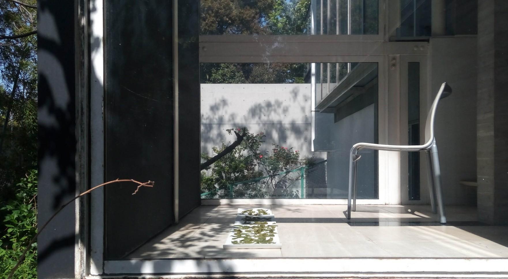 雑木ガーデンの家_01